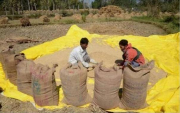 national-food-security-act-2013