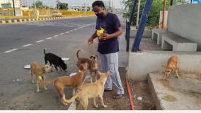 international-dog-breeding-day
