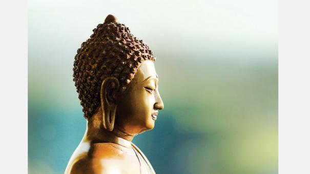 zen-quotes