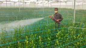 farmers-affected-in-nilgiris