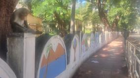 courtallam-walls-beautified-with-paintings