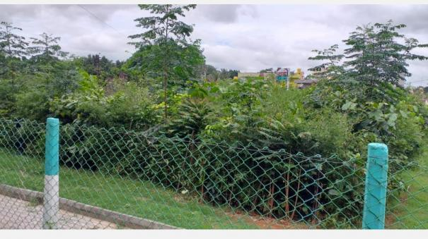 shrub-formation-with-3000-trees-per-12-thousand-square-feet-in-hosur