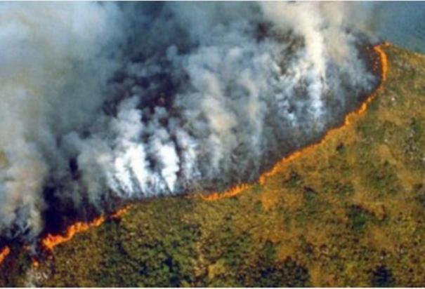 wildfires-threaten-virgin-amazon-rainforest