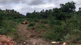 miyawaki-forests-to-be-set-up-in-tenkasi