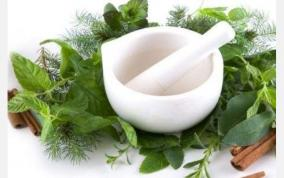 siddha-medicine