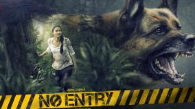 no-entry-first-look