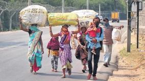 over-1-crore-migrant-labourers-return-to-home-states-on-foot-during-mar-jun-govt