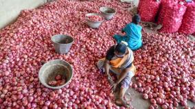 onion-prices-soar-high