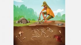 distance-archeology-education