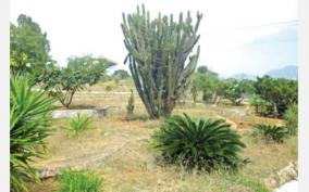 amravati-dam-area