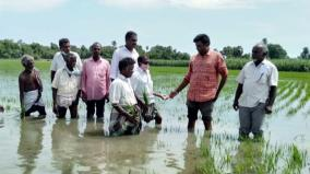 farmers-affected-due-to-rain