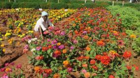 horticulture-sales-centre