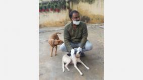 activist-urges-to-save-indigenous-dog-breeds