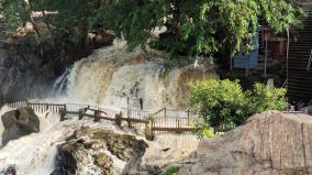 hogenakkal-water-flow-increased