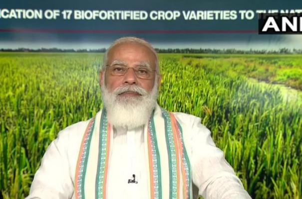 msp-government-procurement-important-part-of-country-s-food-security-pm-modi