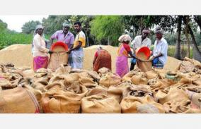 paddy-should-be-procured-without-harassing-farmers-tamil-nadu-farmers-association-demand