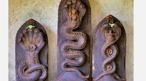navarathiri-nageswari