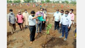 33-acres-of-land-owned-by-the-corporation-of-chennai-at-chengalpattu-traditional-landscaping-system