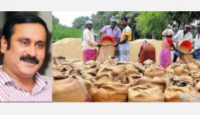 rain-soaked-paddy-should-be-procured-by-relaxing-the-rules-anbumani-ramadas-request
