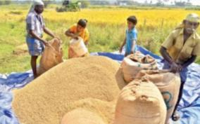 paddy-purchasing-stations