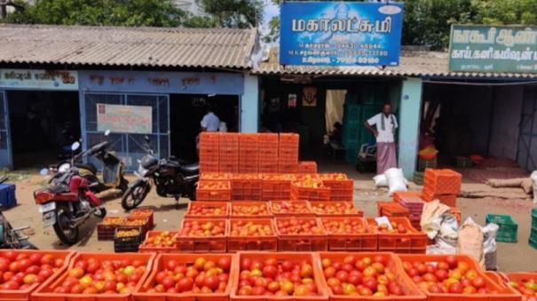 tomato-prices-come-down-farmers-face-loss