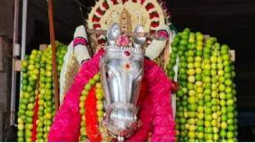 kanyakumari-bagavathi-amman-temple-festival-given-nod
