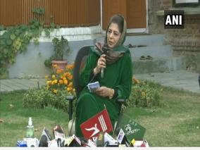 will-raise-national-flag-only-when-j-k-flag-is-brought-back-mehbooba-mufti
