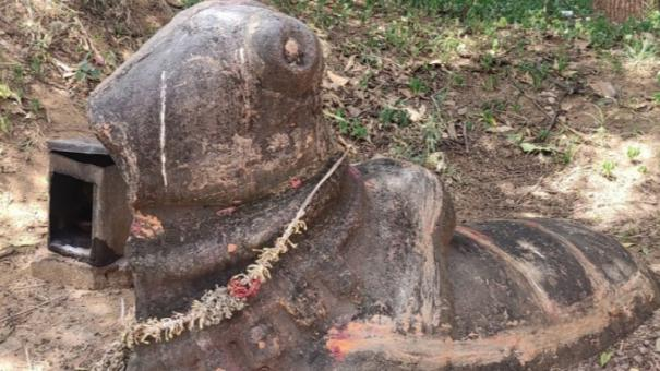 people-of-tenkasi-remote-village-demand-excavation-being-done-to-trace-the-history