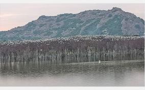 ponpathi-lake