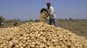 vegetable-farmers