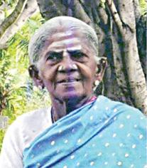 doctorate-for-thimmakka