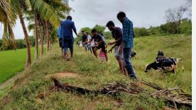 2nd-year-of-gajah-storm-palm-lovers-sow-1000-palm-seeds-in-kothamangalam