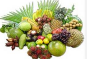 natural-medicine-day