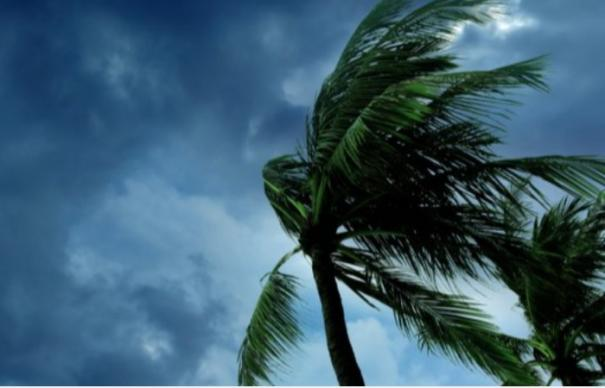 postponement-of-group-4-typist-counselling-due-to-nivar-cyclone
