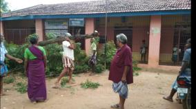 fear-of-cyclone-villagers-cutting-down-trees