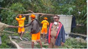 removal-of-102-fallen-trees-by-nivar-storm-chennai-police-relief-work