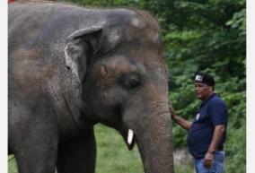 the-world-s-loneliest-elephant