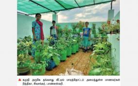 home-terrace-garden