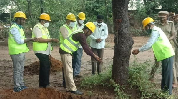 tree-transplanting-in-tirupathur
