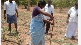 tamil-nadu-agriculture-university-patent-for-cane-cutting-machine-for-20-years