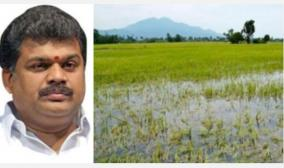 25-lakh-acres-of-crops-submerged-in-rains-gk-vasan-urges-action