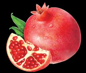 pomegranate-skin