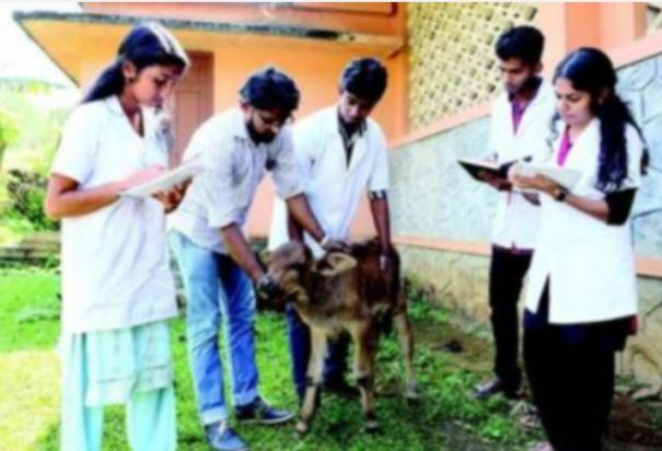 veterinary-medicine-courses-special-counselling-begins