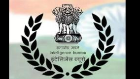ib-assistant-central-intelligence-officer-executive-exam-2020