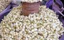 dindigul-jasmine-price-soars-high