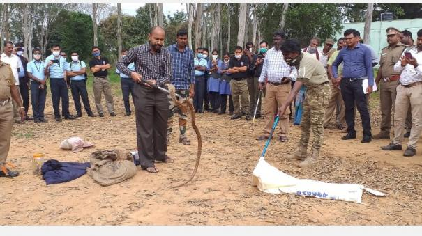 how-to-find-and-deal-with-venomous-snakes-one-day-training-camp-in-hosur-chennai-snake-farm-expert-group-participation