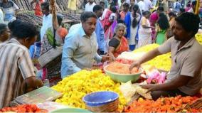 tenkasi-pongal-celebration-in-low-note-due-to-rains