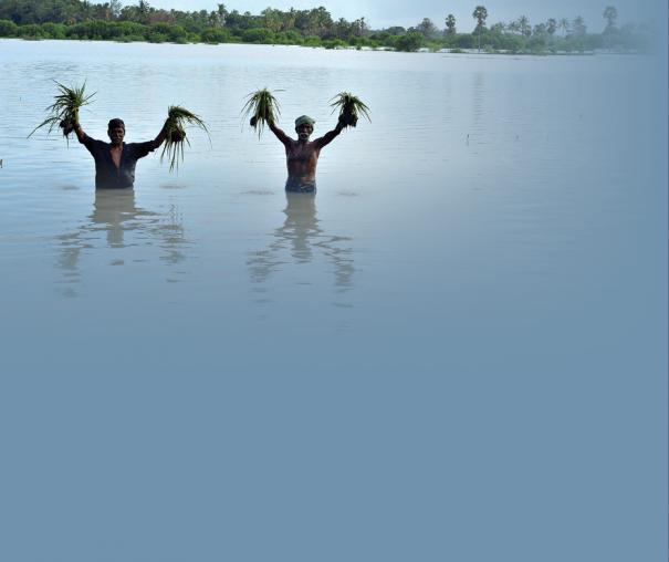 cauvery-delta-farmers