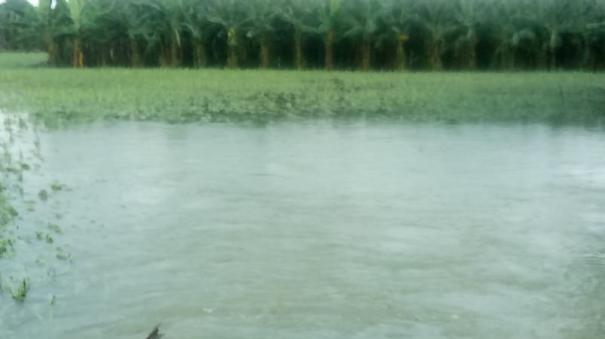 3-ministers-inspect-flood-damage-in-nellai