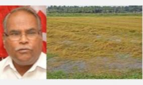 heavy-rain-in-delta-and-most-districts-for-crops-damaged-by-submergence-rs-30-thousand-compensation-marxist-party-demand